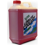 Антифриз Esper LLC55-4RP красный, 55% 4L фото