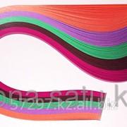 Бумага Набор №76 120гр., 295мм., 150 полос, 5 цветов фото