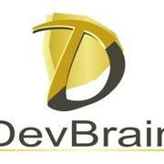 Поиск и подбор высших и управленческих кадров ДевБрэйн фото
