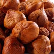 Жареный фундук, рубленыы, в виде муки из ореха. фотография