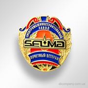 Наградной знак Почетный ветеран SELMA DIC-0386 фото