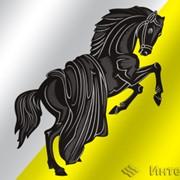 Флаг города Касли (Челябинская область) фото