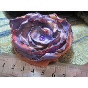 Синяя роза фото