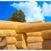 Изготовление срубов домов фото