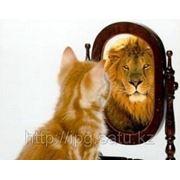Тренинг уверенности в себе фото