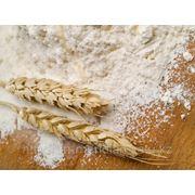 Крахмал пшеничный, Алматы фото