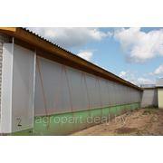 Световентиляционные шторы для коров (Беларусь) фото