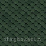 Шинглас Самба соната Зеленый фото