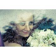 Свадебное фото (Пакет «СТАНДАРТ») фото