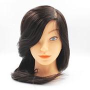 Голова учебная натуральный 100 % волос темный шатен 45см фото