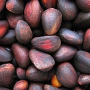Закупка кедровых орехов фото