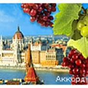 Автобусные туры - Венгрия фото