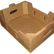 Гофроящики, коробки из 5-слойного гофрокартона под помидоры фото