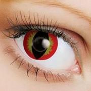 Линзы Crazy OkVision OKVision Crazy Devil eye фото