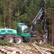 Харвестер Silvatec 8266TH Машина для заготовки древесины фото