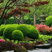 Озеленение территорий,ландшафтный дизайн фото