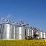 Хранение зерновых культур фото