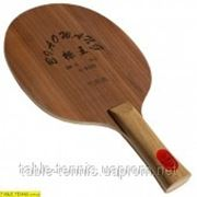 Основание для настольного тенниса GLOBE BiaoWang BW-5 ALL фото