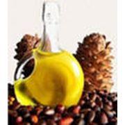 Кедровое масло фото