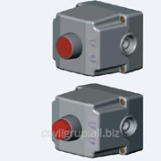 Пост кнопочный IP65 ST22K1 фото