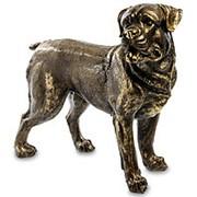 Скульптура Ротвейлер/ Собака арт.БФ-14 фото
