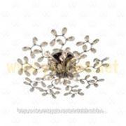 Люстра Адриатика MW-Light 280011008 фото