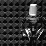 Дикторские услуги - озвучивание аудиокниги , Аудиоролик , озвучивание текста , создание рекламного джингла Астана фото