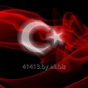 Курсы турецкого языка (репетитор) фото