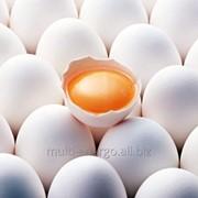 Яйцо куриное белое «Деревенское» фото
