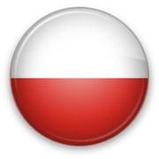 Перевод и адаптация веб-сайтов С/НА польский язык фото