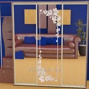 Зеркало для шкафов купе 44927 фото