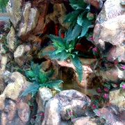 Устройство декоративных водоемов. Создаем авторские декоративные водопады и фонтаны. фото