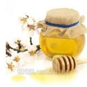 Мёд и пчелопродукты фото
