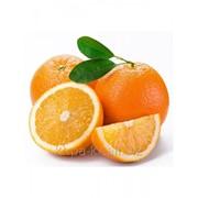 Ароматизатор жидкий для молочной продукции Апельсин-шоколад 651 фото
