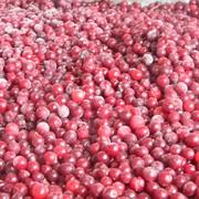 Шоковая заморозка ягод и овощей фото
