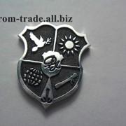 Нагрудные значки из серебра на заказ Киев фото