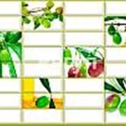 Листовая панель ПВХ Плитка Оливка 960*480мм фото