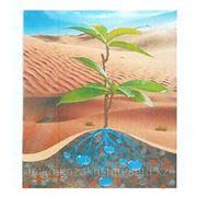 Гидрогель - средство для удержания влаги в почве фото