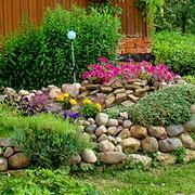 Альпийская горка в саду, на даче фото