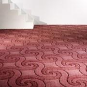 Покрытия ковровые Кат-луп фото