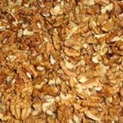 Walnut kernels фото