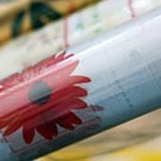 Клеенка Transparent PVC 1,4*20м с рисунком 3D фотография