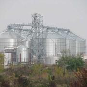 Проектирование и строительство комплексов по хранению и переработке зерновых и масличных культур фото