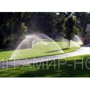 Монтаж автоматического газонного полива под ключ, озеленение фото