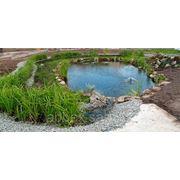 Строительство декоративных водоемов фото