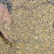 Комбикорм для перепелок несушек, честный, экологически чистый фото