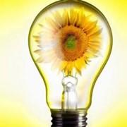 Внедрение энергосберегающих технологий в Украине фото
