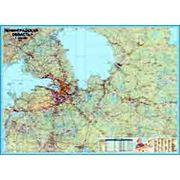 Карта настенная Ленинградская область. фото