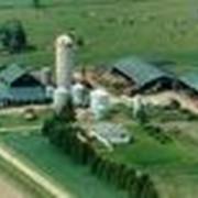 Регистрация Фермерского хозяйства фото