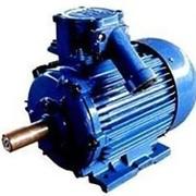 Электродвигатели взрывозащищенные АИМУ 280M2 фото
